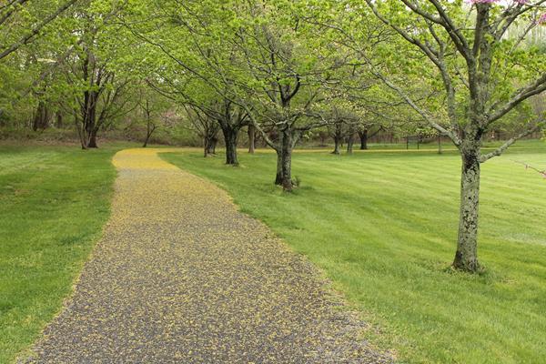 Spring Walkway